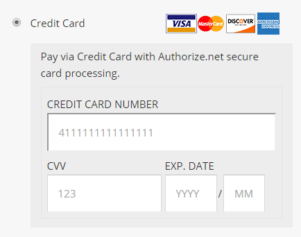 Authorize.Net AIM in checkout